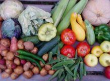 самый полезный овощ