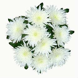 chtoby-cvety-dolshe-stoyali-1