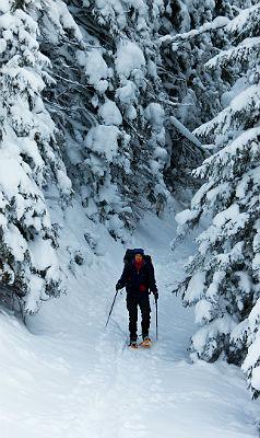Горнолыжные склоны ждут вас в феврале