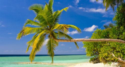 Мальдивы - отличный отдых в январе