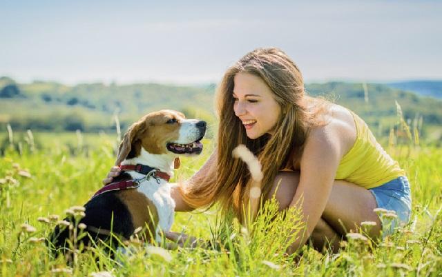 собачка с девочкой